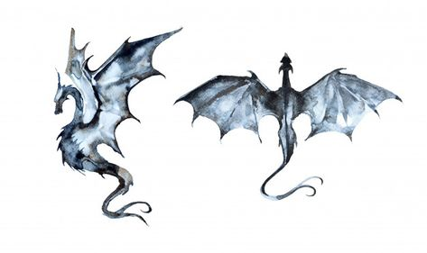 Hand Painted Watercolor Dragon Illustration