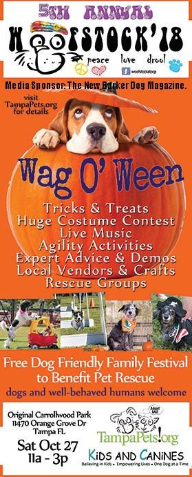 Do You Know Why Dogs Like To Dress Up For Halloween Because They Love To Make Us Laugh Tomorrow Evening In Bonita Spring Dog Magazine Pet Parade Dog Friends