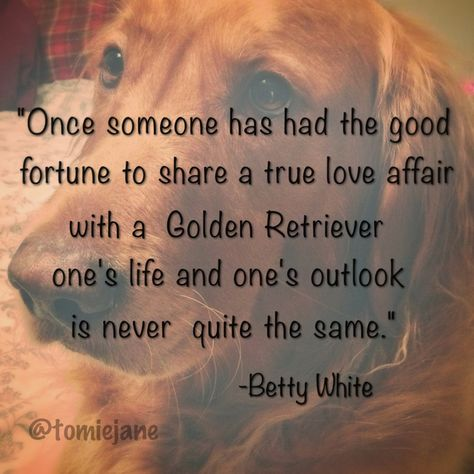 """Once someone has had the good fortune to share a true love affair with a Golden Retriever, one's life and one's outlook is never quite the same."" -Betty White"