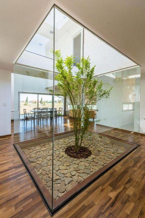 Galería de Casa Almada / Mariano Saravia - 2 #indoorgarden