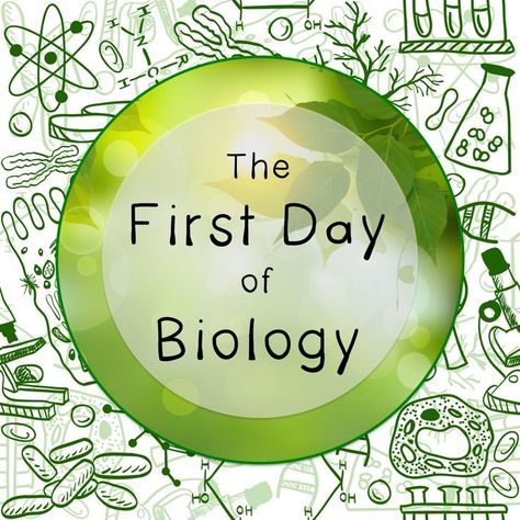 The First Day of Biology Class: A Step-by-Step Guide for Teachers - Science Island