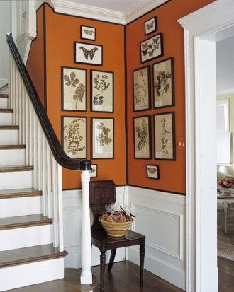 This traditional English-style foyer, painted pumpkin-orange, offers a warm welcome to all who enter. Paired with plenty of whites -- the wainscoting, ceiling, risers, trim, and balusters -- the walls feel crisp, particularly when outlined with brown grosgrain ribbon (which is adhered with craft glue). The warm browns of the wood harmonize well with orange, animating and restraining it.