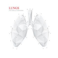 Best Geometric Lungs Illustrations, Royalty-Free Vector Graphics & Clip Art
