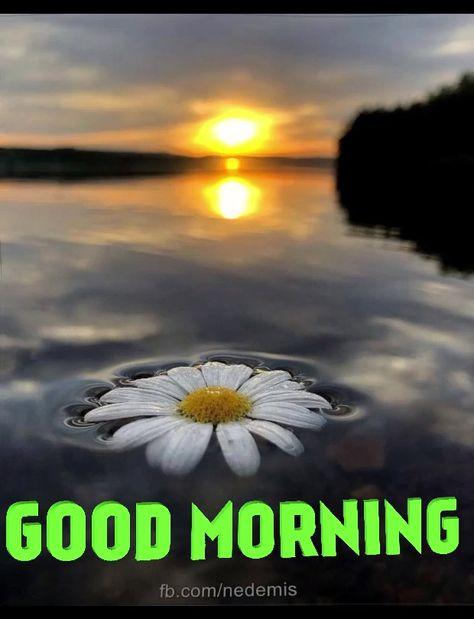 Good #Morning #Message
