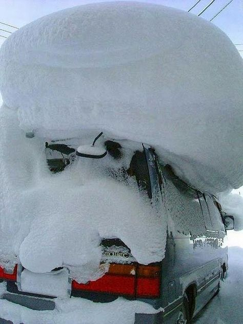 did u bring the ski's in last night. there on the car.
