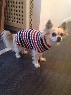 Det första grundmönstret hundtröja | Hundtröja, Hundtäcke