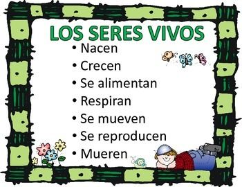 Spanish Living And Nonliving Seres Vivos Y No Vivos Living And Nonliving Nonliving Dual Language