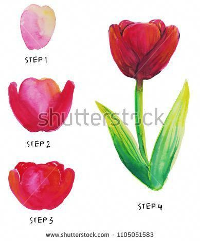 Easy Tulip Watercolor Tutorial Way How To Step By Step Painting