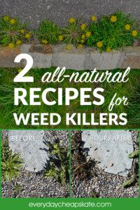 How to Make All-Natural Weed Killer—Super Easy and Better