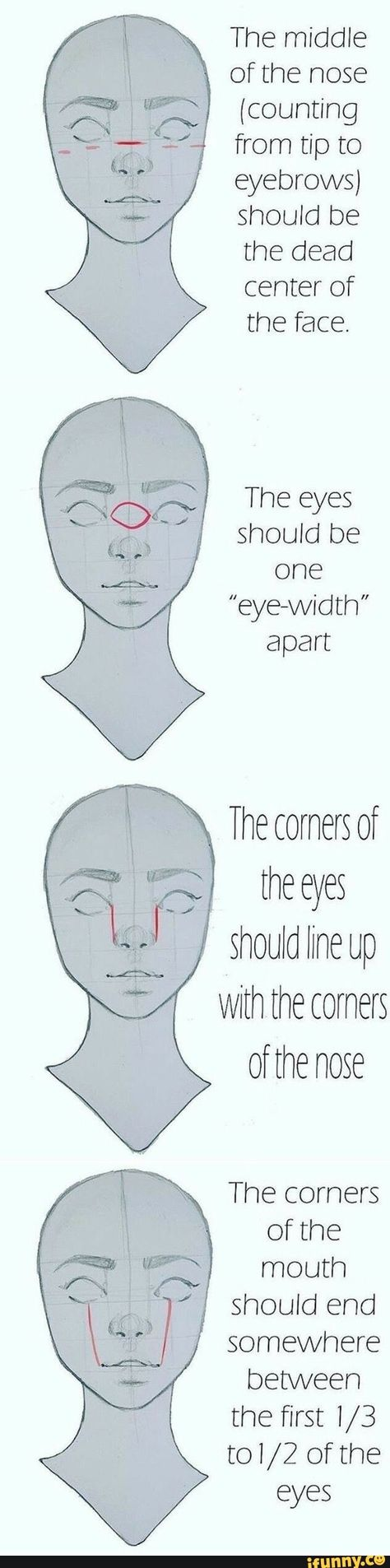 """The middle of the nose (counting from tip to eyebrows) should be the dead center of the face. The eyes should be one """"eye-width"""" apart – popular memes on the site iFunny.co #humanbody #animalsnature #the #middle #nose #tip #should #center #face #eyes #eye #width #apart #pic"""