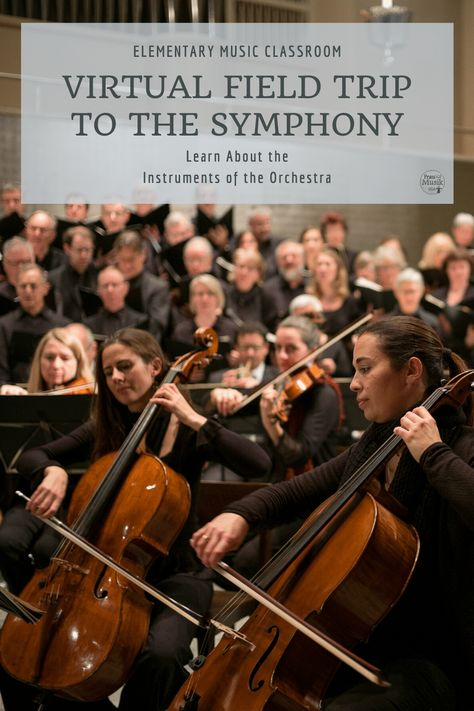 Learn about musical instruments with a virtual field trip to the symphony. Enjoy these videos of varying styles & genres as your students listen & learn. Instruments Of The Orchestra, Musical Instruments, Music Sub Plans, Music Lesson Plans, Elementary Music Lessons, Elementary Schools, Music Classroom, Music Teachers, Classroom Ideas
