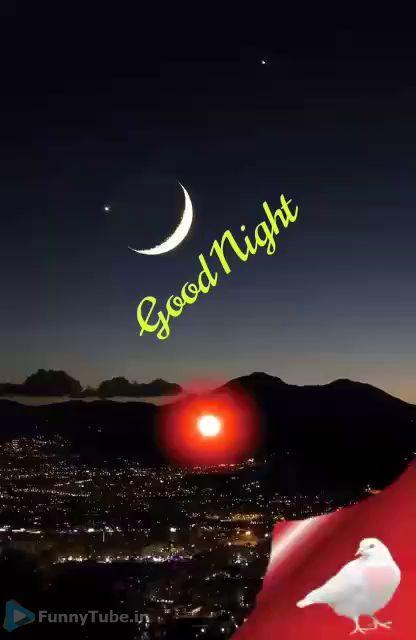 Amazing Animated Good Night Status Gif Good Night Gif Good Night Good Night Image