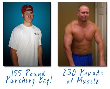 Before after powerbuilding arnold blueprint secrets pinterest before after powerbuilding arnold blueprint secrets pinterest muscle mass bench and muscles malvernweather Images