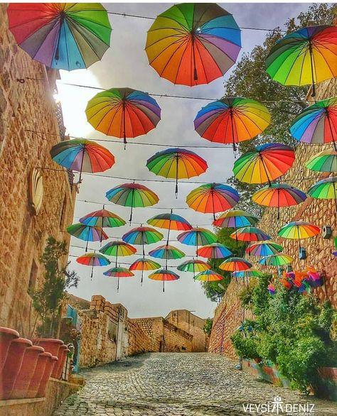 Bütün acılar üstüme yağınca sen bana açılan şemsiyesin annem  #mardinnofficial #eskimardin  Bütün acılar üstüme yağınca sen bana açılan şemsiyesin annem  #mardinnofficial #eskimardin #mardin #midyat #mezopotamya #objektifimden #benimkadrajim #nikon #photo #fotografvakti #ig_kadraj #aniyakala #picoftheday #nature #vscogram #assyrian #natgeo #travel #holiday #instagood #Picoftheday #istanbul #travel #turkey #instagram #follow #cool #photography #instadaily #beautiful #photooftheday