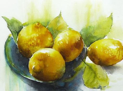 Les Citrons 40x30 Watercolor By Elena Blondeau Nourriture