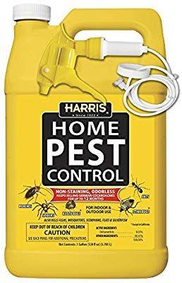 Pin On Bug Spray