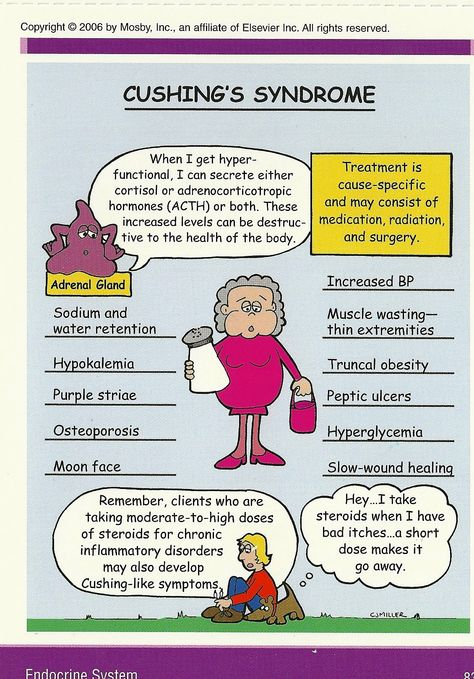 Cushing's Syndrome graphic of symptoms