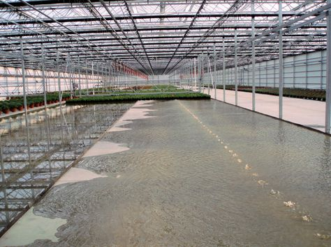 Ebb And Flow Table 1 | Greenhouse Benches | Pinterest | Greenhouse Benches