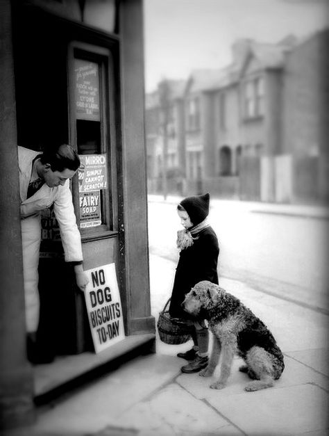 No dog biscuits today - Vivian Maier Vivian Maier, Vintage Pictures, Old Pictures, Old Photos, Photo Vintage, Vintage Dog, Vintage Children, Vintage Black, Vintage London