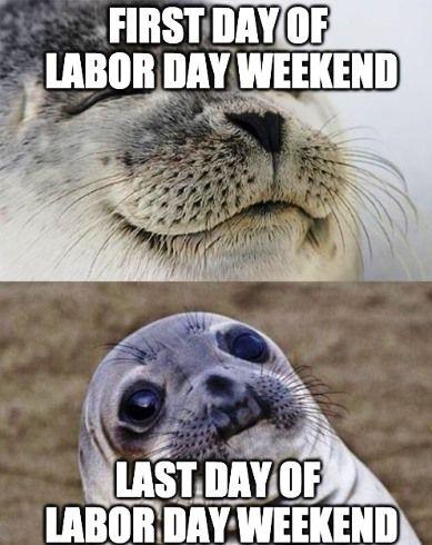 Labor Day 2020 Jokes Man Up Jokes Good First Jobs