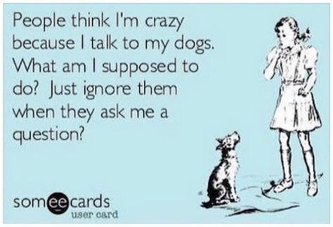 Ecard Quotes Funny quotes about dogs People think Iu0027m crazy - proudest accomplishment