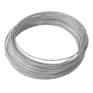 Ook 100 Ft 10 Lb 24 Gauge Galvanized Steel Wire 50136 The Home Depot In 2020 Wall Trellis Galvanized Steel Galvanized
