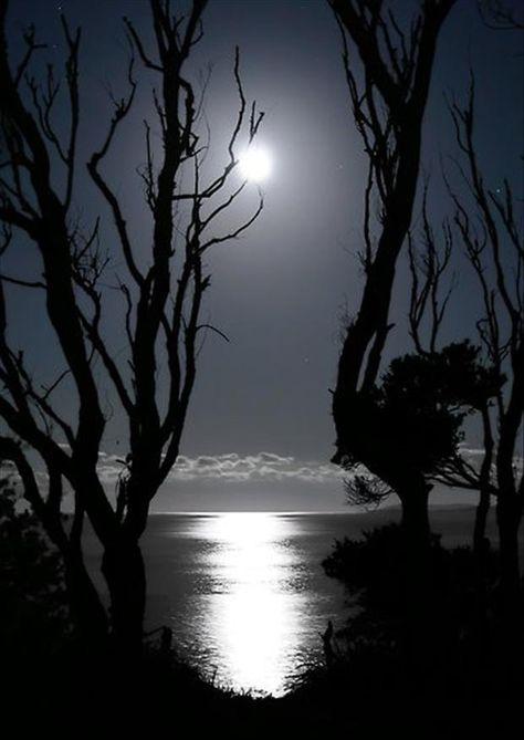 Dark Night with moon