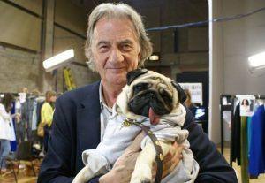 Paul Smith Pugs Cute Pugs Pug Breed