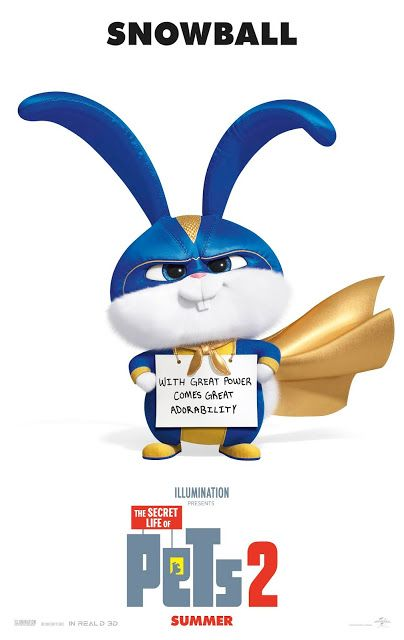 The Secret Life Of Pets 2 In Theaters June 7 2019 Secret Life