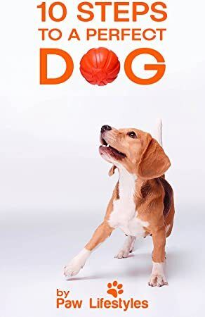 Download Dog Training 10 Steps To A Perfect Dog Author Paw
