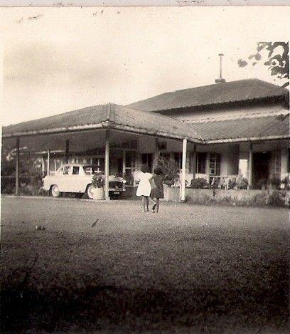 Margerita Tea Estate
