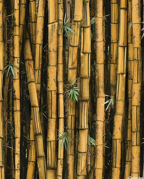 Digitally Printed Wider Bamboo Is About 1 1 2 From The Call Of