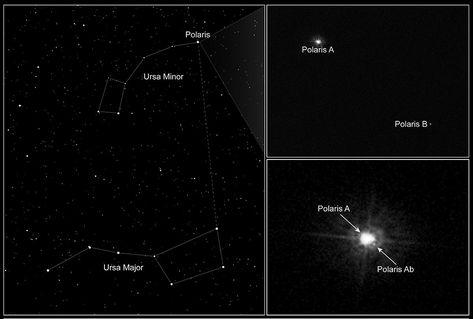 Polaris (star) - Simple English Wikipedia, the free