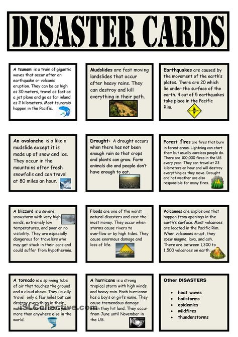 These vocabulary cards could be used in a center for a matching game or for a short descriptive response.