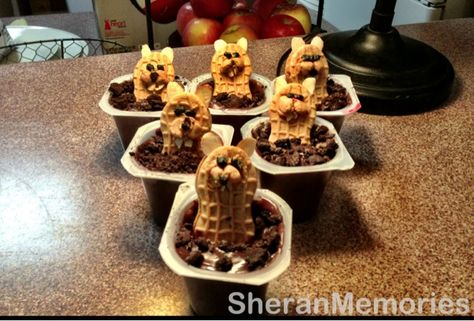 Made these cute little Ground Hog Snacks this year by Sheran Memories