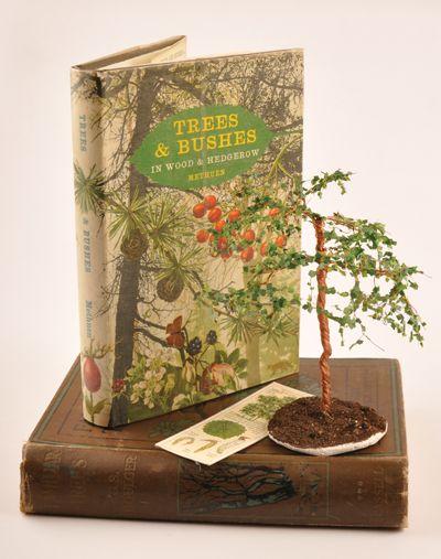How to make miniature trees