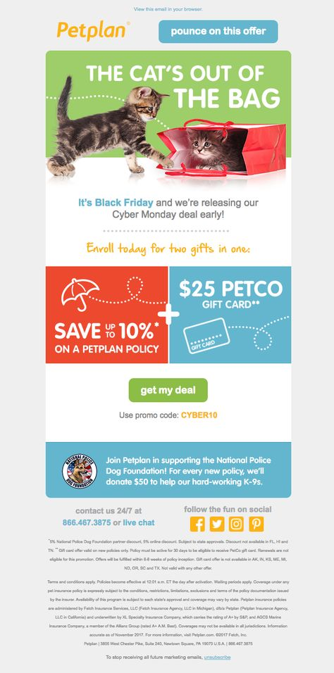 Petplan Sent This Email With The Subject Line Get Your Paws On