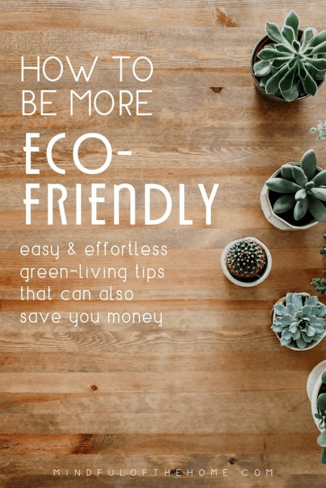 30 Easy Tips For an Eco-Friendly Home