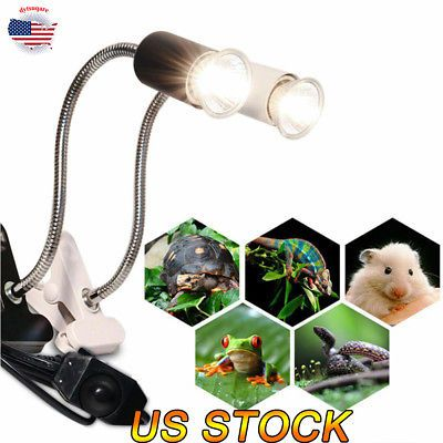 Reptile Ceramic Heat Uvb Uva Bulb Lamp Holder Aquarium Lighting For Turtle New Aquarium Lighting Aquarium Lamp Reptile Lights