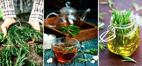 el té de romero es bueno para adelgazar