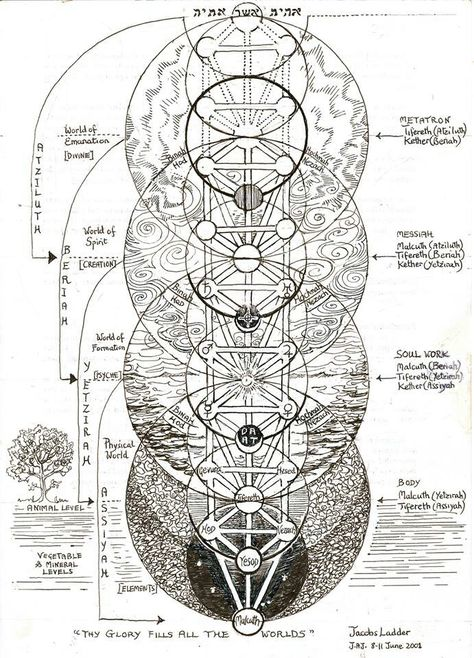 (not my caption) The Tree of Life, also called Jacob's Ladder. This is a Kabbalistic image but interestingly, the spheres in the tree overlay the flower of life 'sacred' geometric form and therefore represents a Primal Pattern of Nature. Tarot, Fourth World, Jacob's Ladder, Spirit Science, Book Of Shadows, Tree Of Life, Magick, Signs, Geometric Form