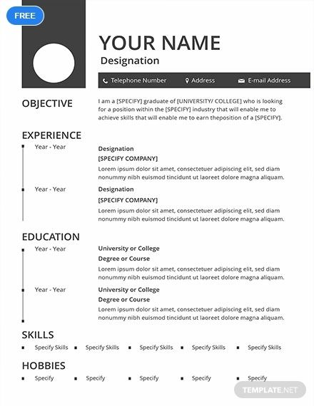 Free Blank Resume Cv Template Word Doc Psd Indesign Apple Mac Pages Illustrator Publisher Cv Template Word Job Resume Format Resume Template
