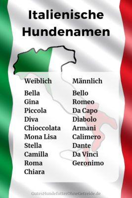 Italienische Hundenamen Weiblich Und Mannlich Mit Bedeutung Hundenamen Weibliche Hundenamen Italienische Madchennamen