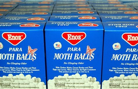 Moth Balls ...keeps snakes away, sprinkle around outside of house