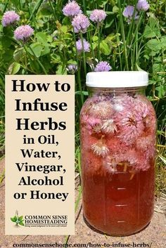 How to infuse herbs - Make your own flavored cooking oils or flavored vinegars, delicious extracts and sweet treats, or homemade medicines from your garden. *** Check this useful article by going to the link at the image. Healing Herbs, Medicinal Plants, Natural Healing, Natural Oil, Natural Beauty, Healing Spells, Healing Quotes, Herbal Tinctures, Herbalism