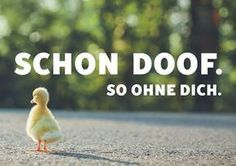 Postkarten Online-Shop | Lustig – Sprüche – M... - #gelb #lustig #OnlineShop #Postkarten #Sprüche
