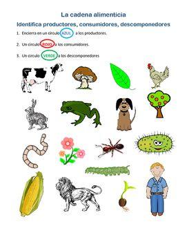 La Cadena Alimenticia By Laura Castillo Teachers Pay Teachers Animal Habitats Preschool Teacherspayteachers