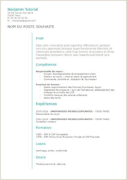 Exemple De Cv Canadien Gratuit Pdf Resume Templates Functional Resume Template Resume Words