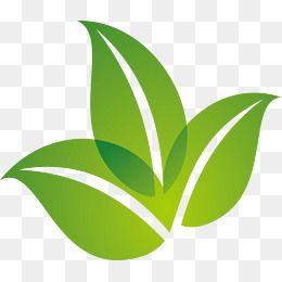 Spring Green Leaf Design Green Logo Design Leaf Logo Organic Logo Design
