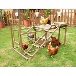Innovation Pet Chicken Activity Center For 6 Chickens At Tractor Supply Co Chickens Backyard Pet Chickens Raising Chickens